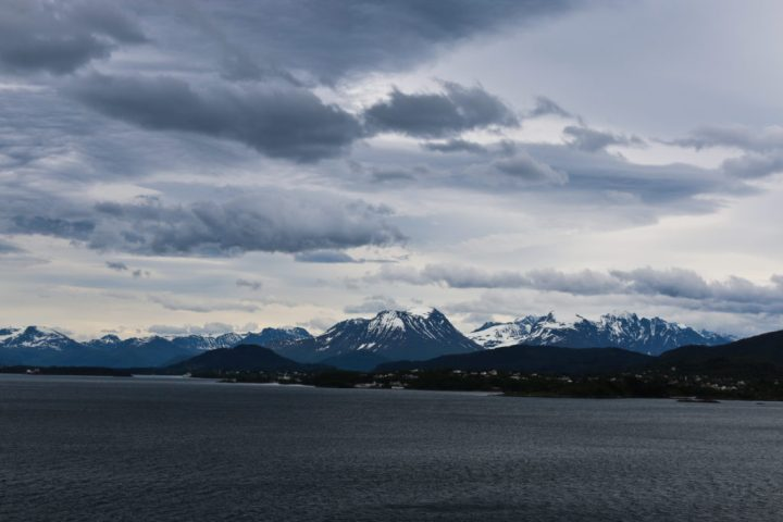 Food Exploring :: Snapshots from the Fjords